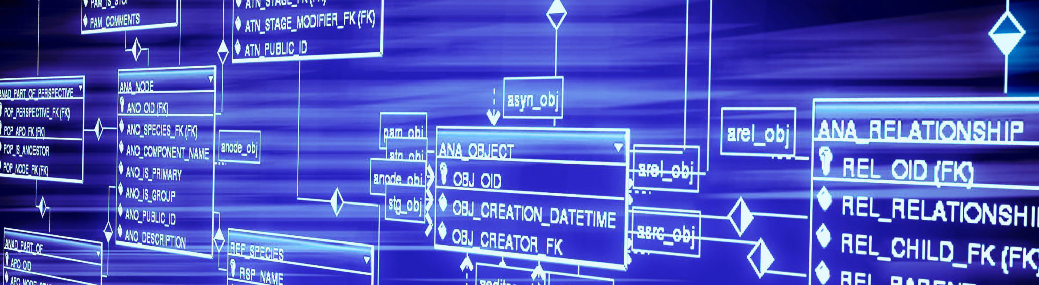 simulation for business process reengineering case study of a database management system